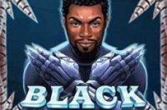 Play Caça-níqueis Black Rider